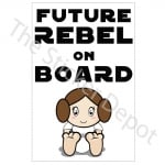 Princess-Leia-on-Board